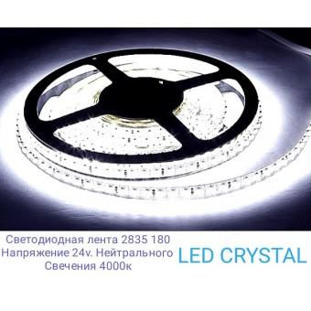Светодиодная лента LUX  SMD2835/180  14.4W  24V  IP20  (нейтрального белого свечения )