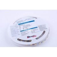 Светодиодная лента LUX DSG 5050/60  14.4w  12V  ip33 (нейтральный белый)