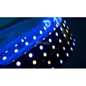 Светодиодная лента LUX  DSG5 5050/120  28.8w  24V  ip33  (RGB + нейтральный белый)